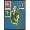 max050AB - 1977 Série Moluscos. Conchas. Carimbo 1o Dia e Comemorativo -  Natal - RN.