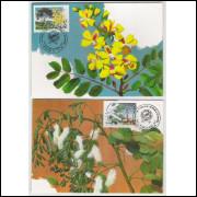 max137-8 - 1990  40 Anos da Sociedade Botânica Brasileira. Flora.Carimbo Comemorativo, Fortaleza-CE.
