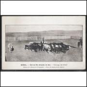 dv01 - Cartão postal antigo, Criação de gado. Pecuária. Édition de La Mission de Propagande.