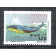 1977 - C-0989 - Defesa do meio ambiente. Fauna, baleia.