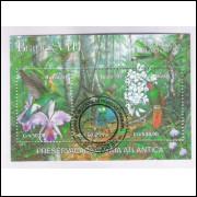 B-088 - 1991 - Brapex VIII - Exposição Filatélica. Mata Atlântica. Fauna,Flora.Carimbo Comemorativo.