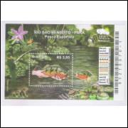 B-151 - 2009 - Rio São Benedito - Pará - Pesca Esportiva. Peixes Metereologia. Fórum Social Mundial