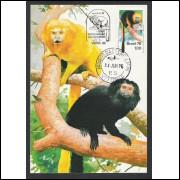 max045 - 1976  - Preservação Natureza - Mico-Leão. Fauna. Carimbo Comemorativo e 1o Dia - Vitória-ES