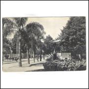 CTB76 - Cartão postal antigo, Curitiba, Praça Osório.