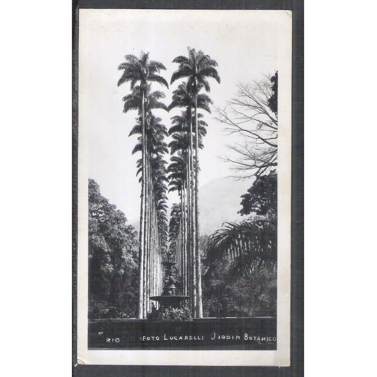 Foto Postal Lucarelli Jardim Botânico, Rio de Janeiro, anos 50.