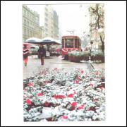 Foto Postal Anos 70 Neve em Curitiba Rua 15 De Novembro