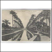 RJ76 - Cartão postal antigo, Avenida Mangue, Rio de Janeiro. Casa Bellas Artes.