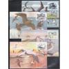 max116-19 - 1985 Parque de Abrolhos. Fauna. Aves. Tesourão, Atobá, Benedito e Batuiruçu.
